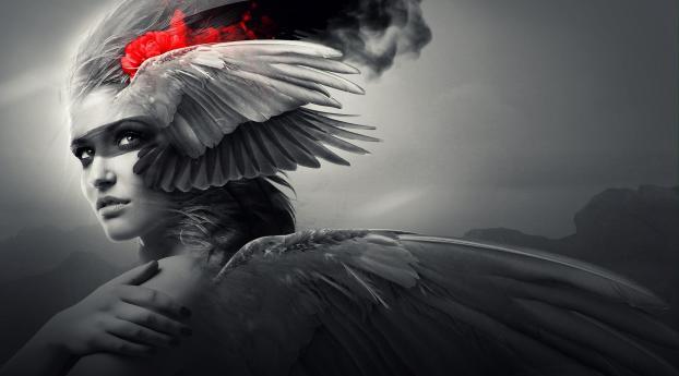 Girl, Wings, Angel, HD 4K Wallpaper