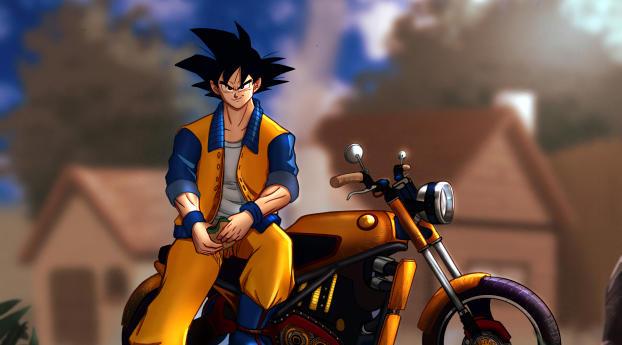 Goku Motorcycle Wallpaper 2560x1600 Resolution