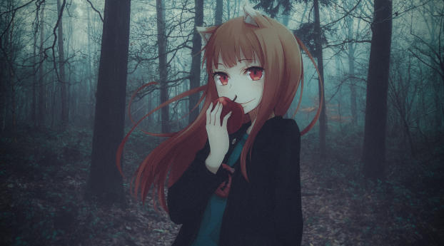 1920x1080 Holo Spice And Wolf 1080p Laptop Full Hd Wallpaper Hd Anime 4k Wallpapers Images Photos And Background