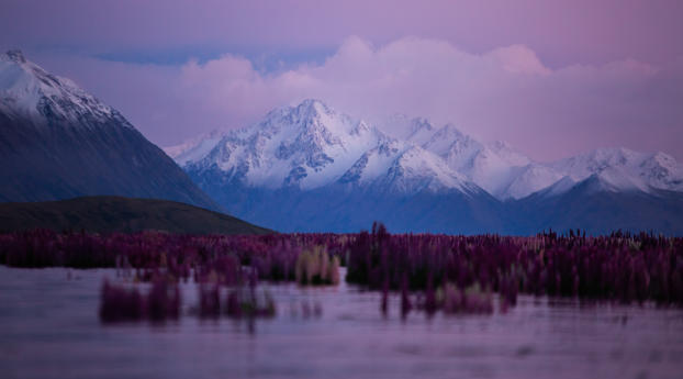 HD Wallpaper   Background Image Lake Tekapo New Zealand