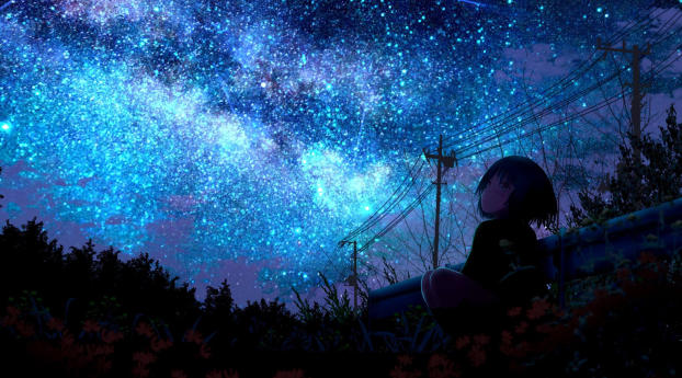 HD Wallpaper | Background Image Lonely Girl Starring Shooting Star