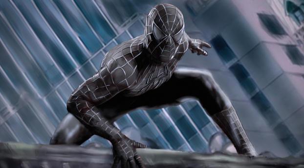 Marvel Comics Spider-Man Black Costume Wallpaper