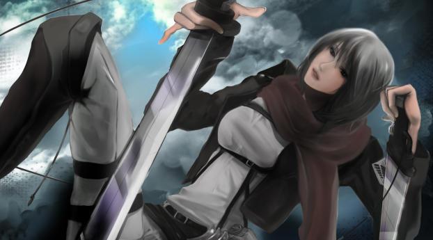 320x240 Mikasa Ackerman Blades Shingeki No Kyojin Apple
