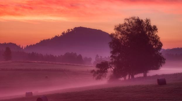 Misty Morning Sunrise 5K Wallpaper