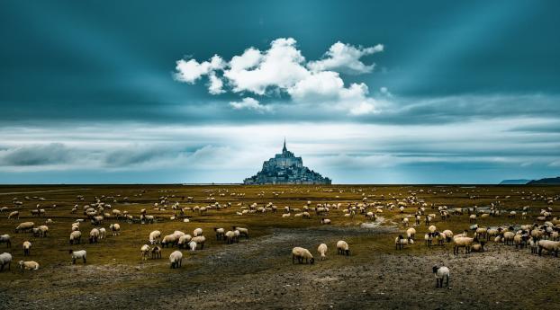 Mont Saint-Michel Landscape Wallpaper 1280x1024 Resolution