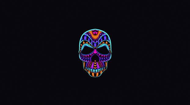 wxl neon color minimalist skull 66418