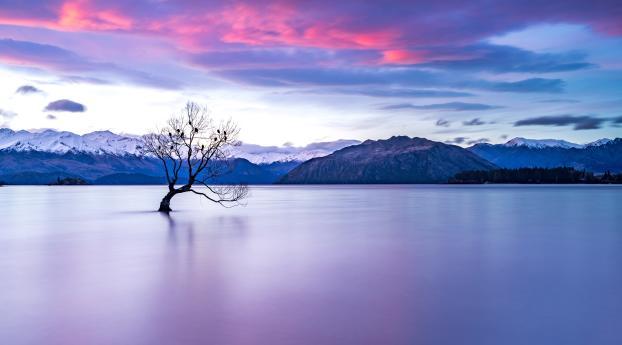 HD Wallpaper   Background Image New Zealand Lake View