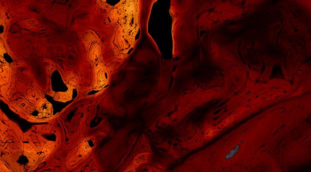 Orange Digital CGI Art Wallpaper