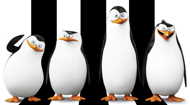 HD Wallpaper | Background Image Penguins Of Madagascar HD Wallpapers