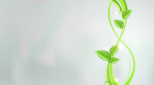 plants, green, abstract Wallpaper