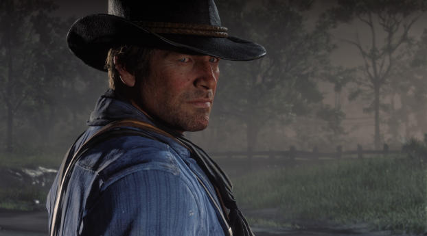 HD Wallpaper | Background Image Red Dead Redemption 2 2019