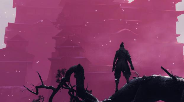 HD Wallpaper | Background Image Sekiro Shadows Die Twice Game