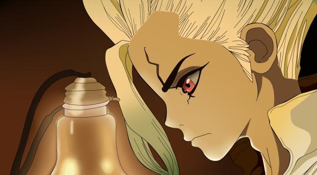 HD Wallpaper | Background Image Senku Ishigami Dr. Stone Anime