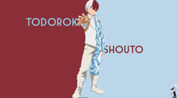 HD Wallpaper | Background Image Shoto Todoroki