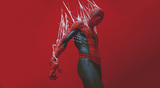 Spider-Man Got Trapped In Web Wallpaper in 1366x768 Resolution