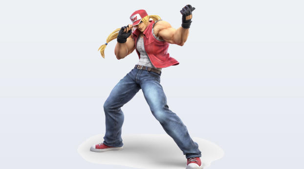 HD Wallpaper | Background Image Terry Bogard Super Smash Bros