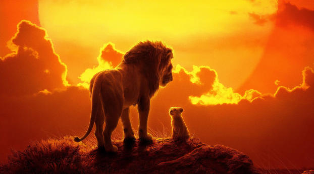 The Lion King 2019 Movie Wallpaper 1280x2120 Resolution