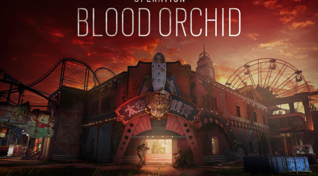 HD Wallpaper | Background Image Tom Clancys Rainbow Six Siege : Operation Blood Orchid