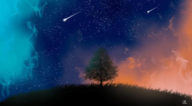 HD Wallpaper   Background Image Tree and Shooting Stars 4K