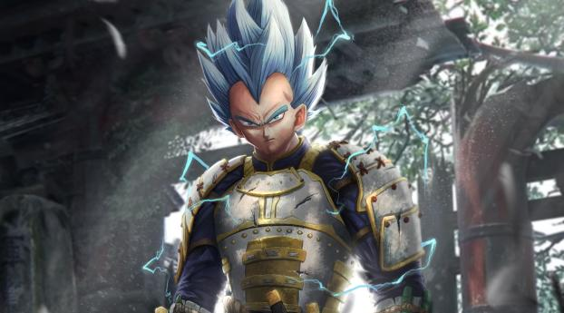 HD Wallpaper | Background Image Vegeta Dragon Ball Anime