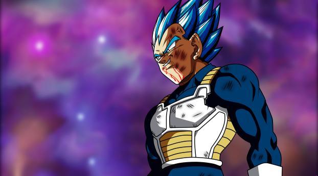 Vegeta Dragon Ball Goku Wallpaper