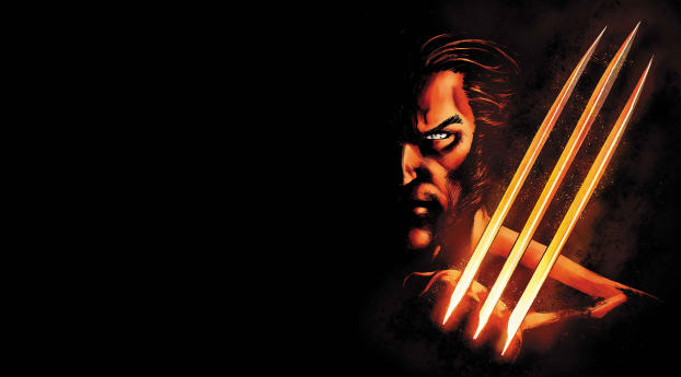 HD Wallpaper | Background Image Wolverine