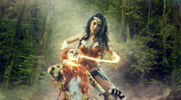 HD Wallpaper | Background Image Wonder Woman vs Cheetah Art