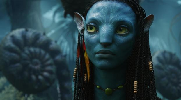 HD Wallpaper | Background Image Zoe Saldana as Neytiri in Avatar